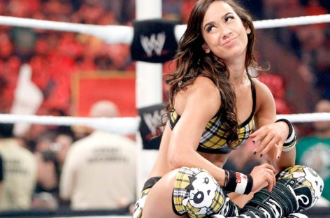 AJ Lee and CM Punk wedding photo leaked online