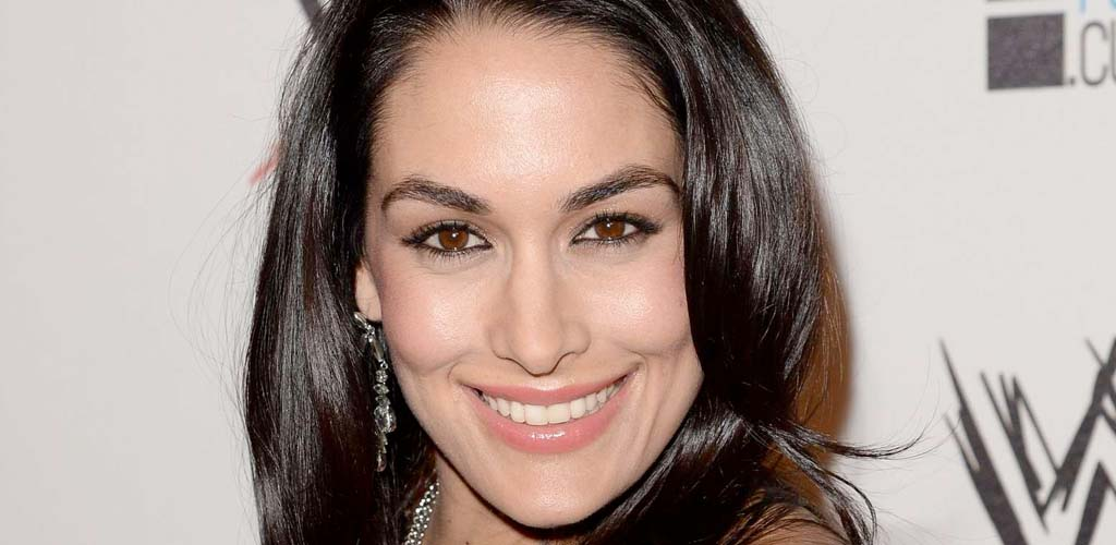 Is Brie Bella pregnant?