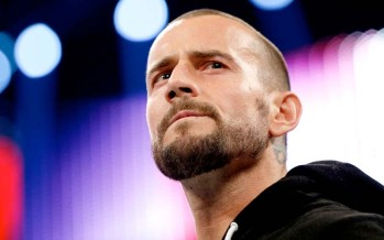CM Punk and AJ Lee tie the knot