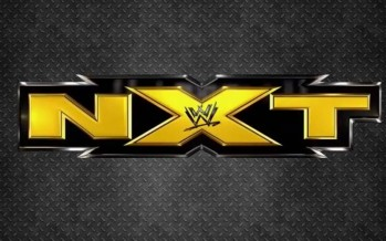 New NXT champion crowned at NXT ArRIVAL