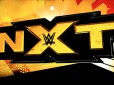 NXT Takeover live specials to be monthly shows