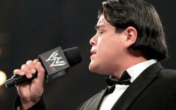 Ricardo Rodriguez suspended for 30 days