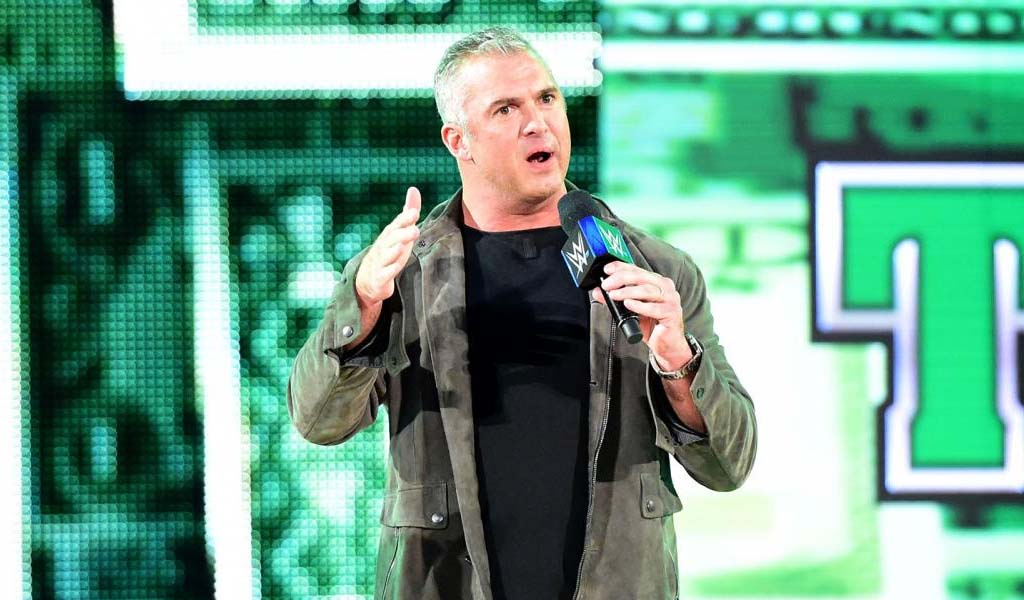 Another Hell In A Cell match…and another dangerous jump from Shane McMahon