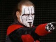 Sting doesn't know what the future holds for him