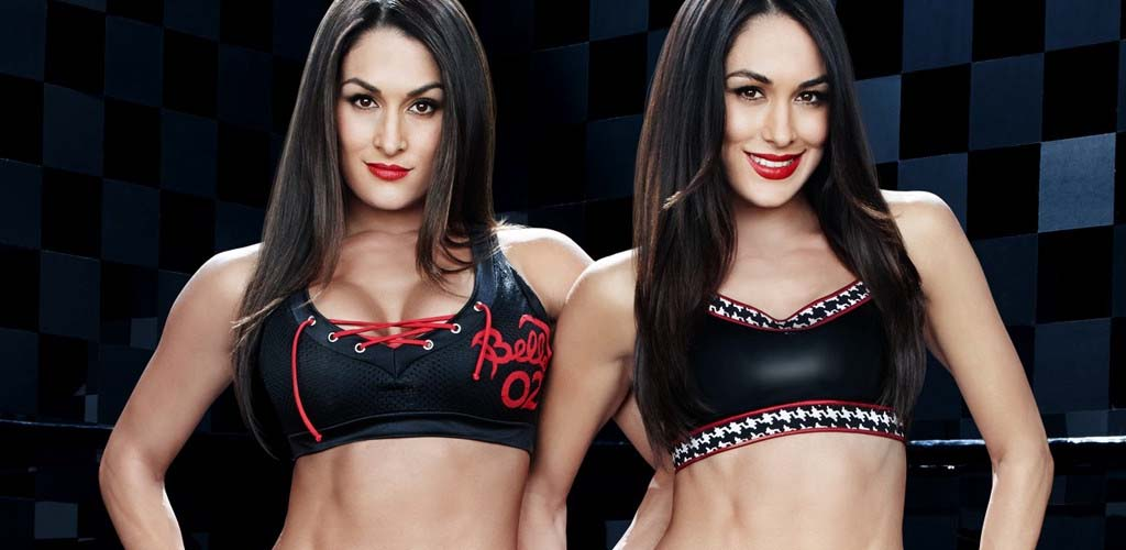 Bella Twins in Paris just minutes out from terrorist attack locations